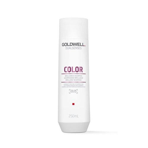 Шампоан за боядисана коса - Goldwell Dualsenses Color Shampoo 250ml