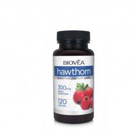 Укрепва сърдечно-съдовата система Biovea Hawthorn 120 капсули